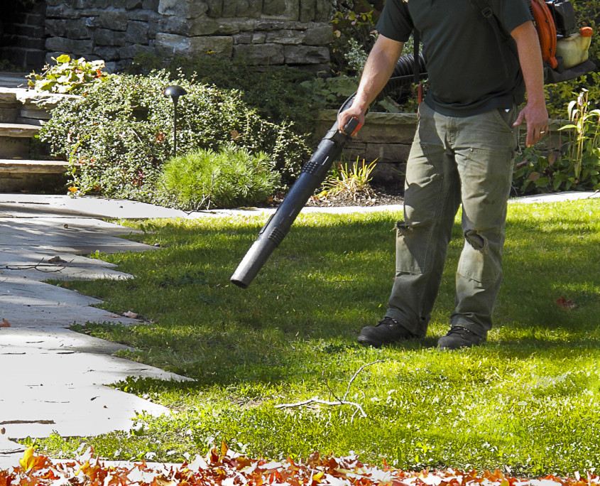 fall-spring-lawn-cleanup-scituate-ma